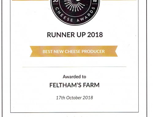 Runner-Up – Best New Cheese Producer