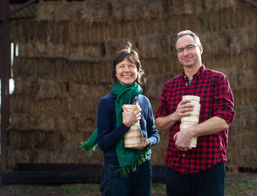 Renegade Monk is Best British Cheese for Feltham's Farm at the VirtualCheeseAwards